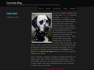 Dalmatiner Hummels-Blog