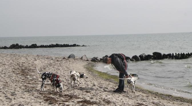 Die Sandstücken in der Lübecker Bucht