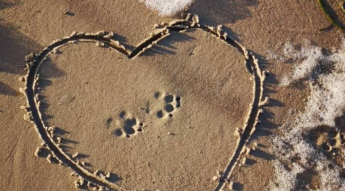 Sandstückchen am Strand